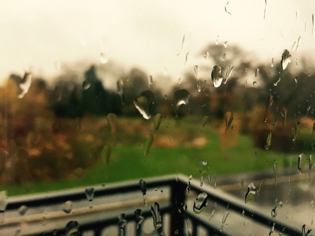 Raindrops on a balcony window overlooking an autumnal landscape