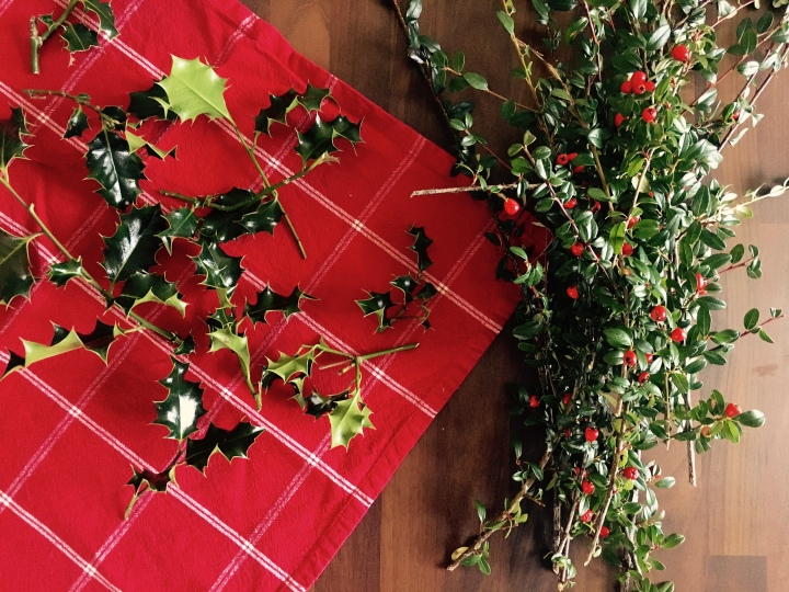 Sprigs of holly leaves and stems of cotoneaster horizontalis