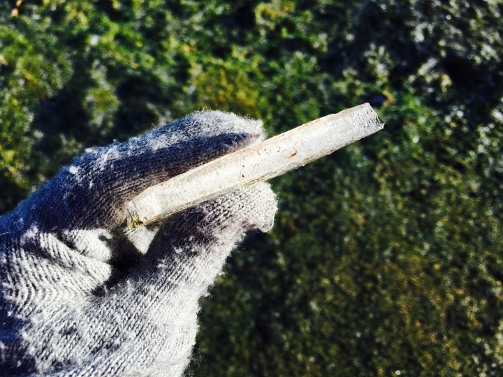 Gloved hand holding a large shard of ice found on top of the Malvern Hills in winter.