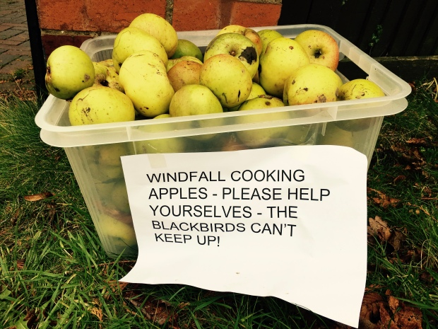 Home grown apples sitting in a plastic container with a sign asking people passing by to take them.