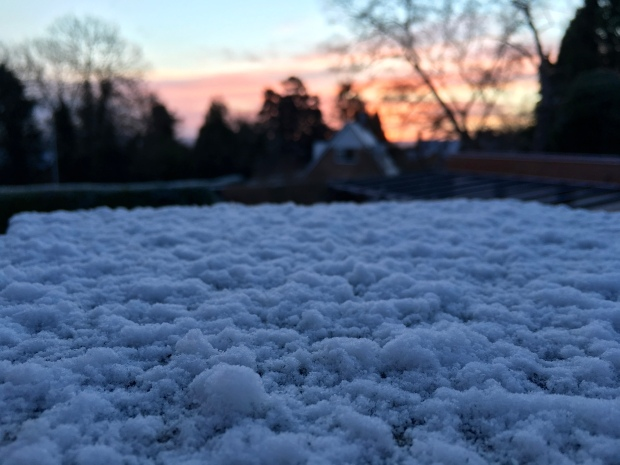 Close up picture of snow with a pink and orange sunrise in the background.