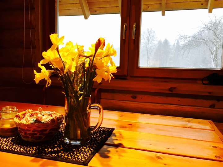 Daffodils sitting on table in log cabin.