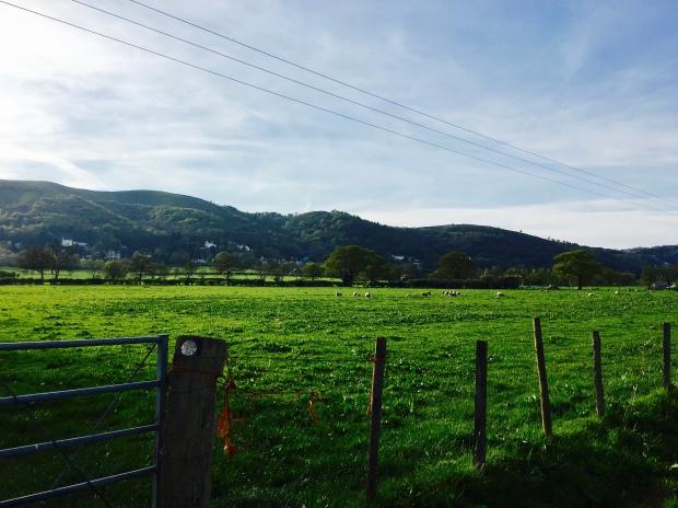 The Malvern Hills.