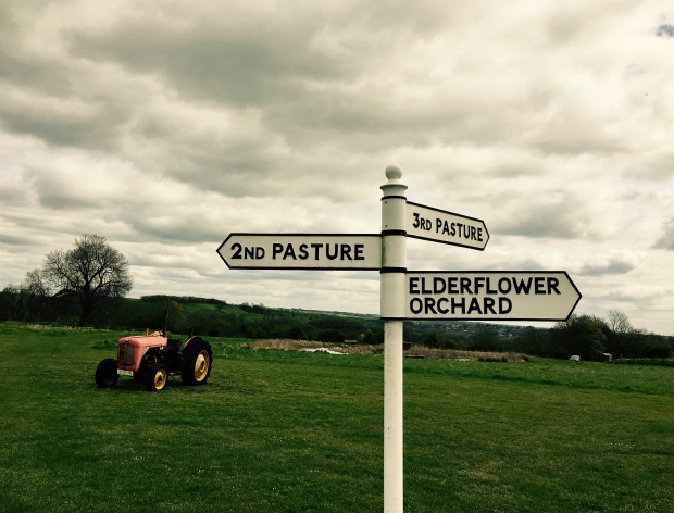Sign post at Thistledown Farm campground, Nympsfield Gloucestershire.