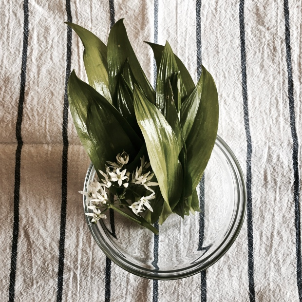 Washed wild garlic and its flowers sitting in a glass bowl on a striped tea towel