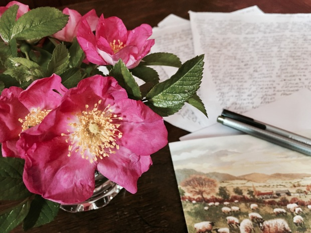 Roses, card and handwritten letter on timber table.