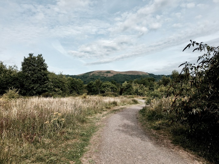 St Wulstan's Nature Reserve, Malvern Wells, Worcestershire, England.