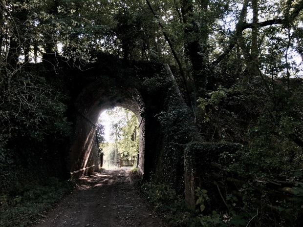 Former bridge/tunnel on old Malvern to Ashchurch rail line