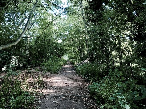 Public footpath on old Malvern to Ashchurch rail line.