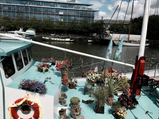 Garden on boat moored in Bristol Harbour.