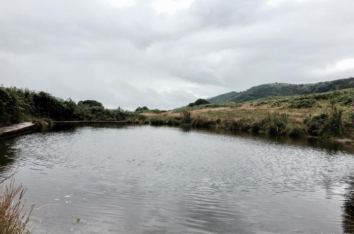 Pond on Malvern Common, Worcestershire, England.