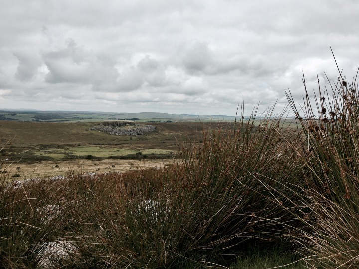 Looking over the Bodmin Moor in Cornwall, England near the Cheesewring.