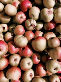 Apples sitting in a crate.