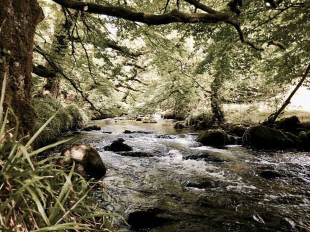 The River Fowey in Cornwall, England.