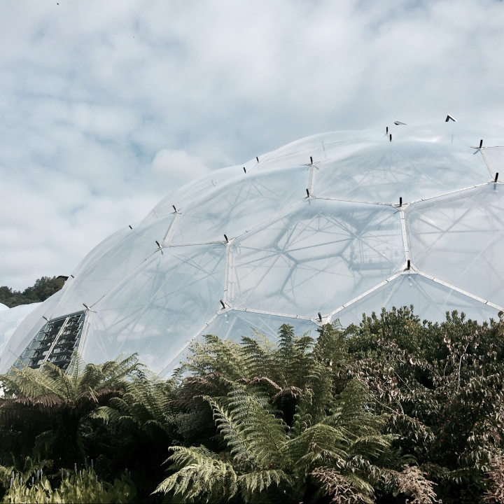 The Eden Project