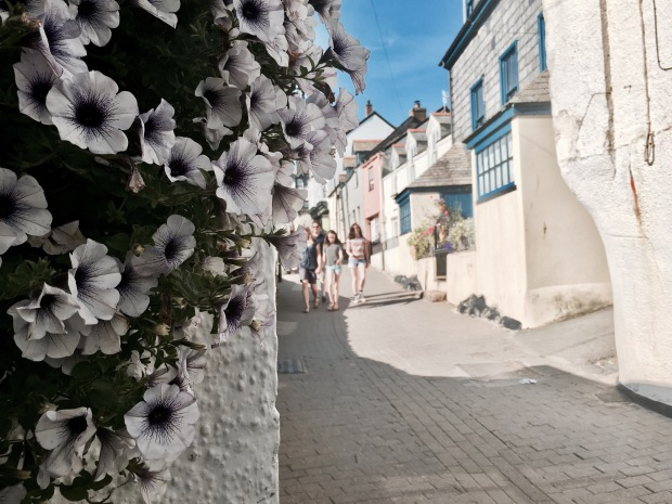 Hanging basket of flowers in Port Isaac, Cornwall, England.