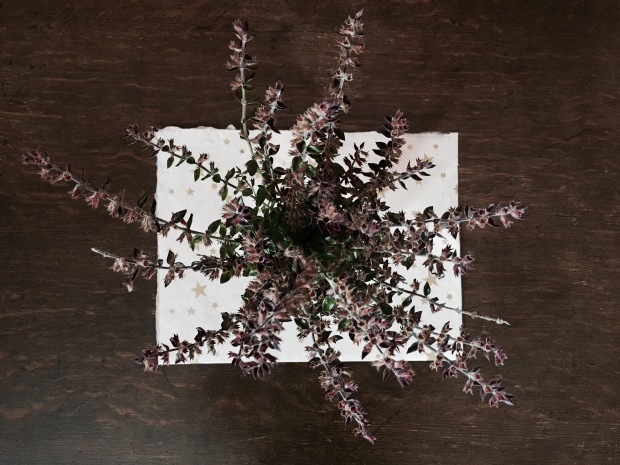 Overhead shot of purple-burgundy coloured flowers in a jar on a dark timber table.