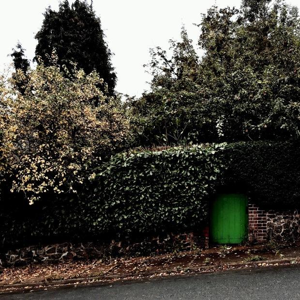 Autumnal looking garden in Malvern, Worcestershire, England.