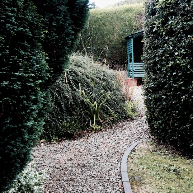 An English cottage garden.