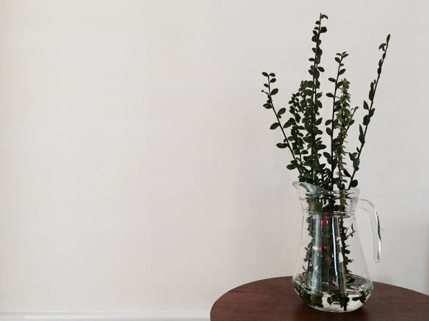 Long green stems sitting in a water jug on a small wooden table.