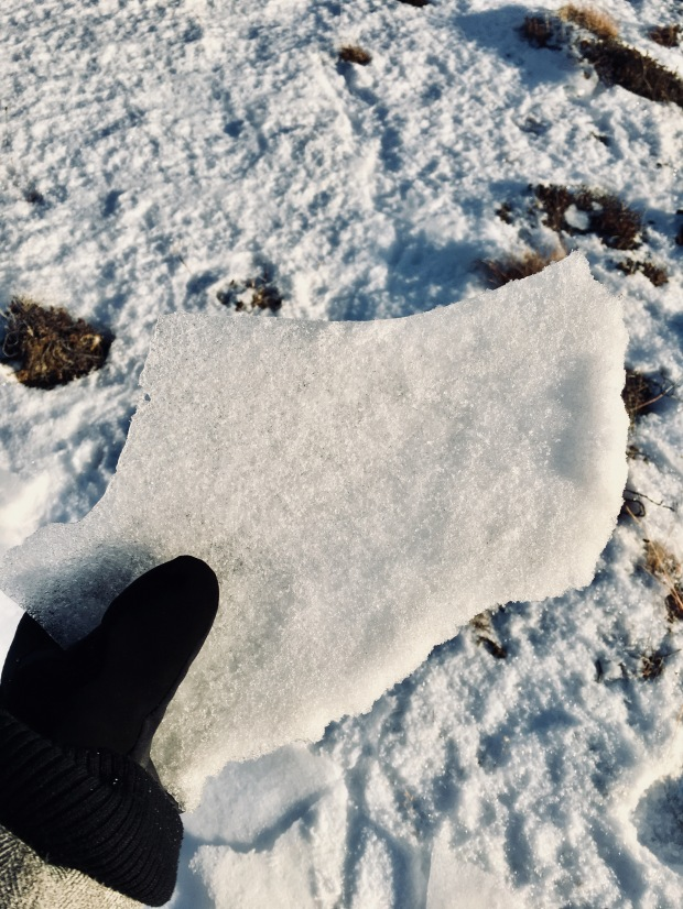 Hand holding a chunk of frozen snow in Iceleand.
