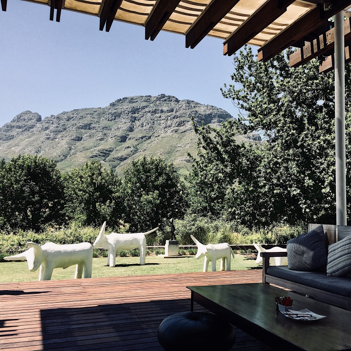 View from Tokara Delicatessen, Stellenbosch, Western Cape, South Africa.