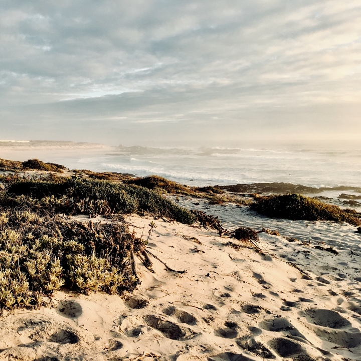 The beach at Yzerfontein, Western Cape, South Africa.