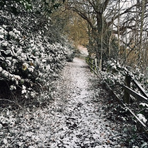 A snowy footpath on the Malvern Hills, in Worcestershire, England.