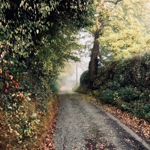 A lane in Herefordshire, England surrounded by Autumnal foliage