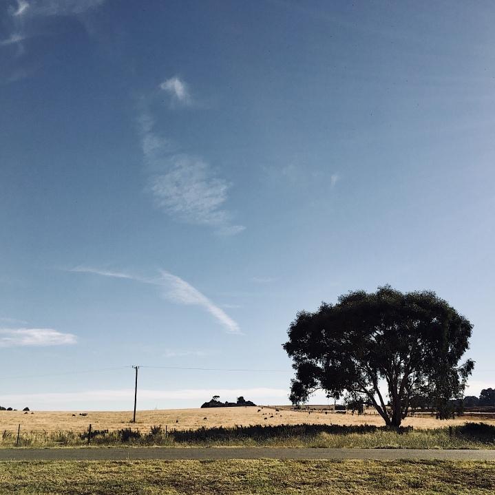 Farm land around Wagga Wagga, NSW, Australia.