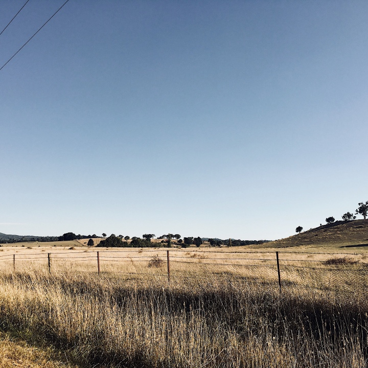 Countryside around Sutton, New South Wales, Australia.