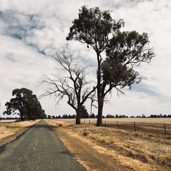 Quiet country road in southern New South Wales, Australia.