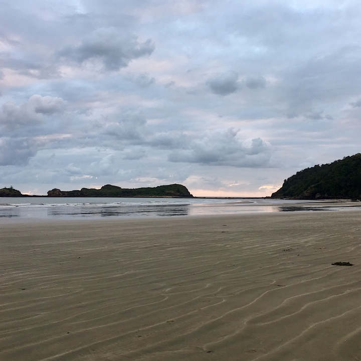 Casuarina Beach, Cape Hillsborough, Queensland, Australia.