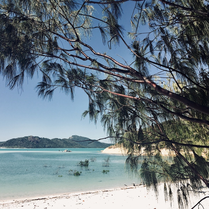 Whitsunday wanderings