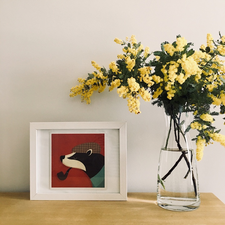 Vase of wattle sitting beside framed picture of a badger.