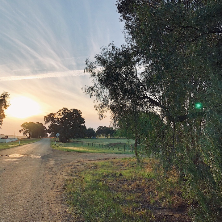 A setting sun along a country road in regional Australia.