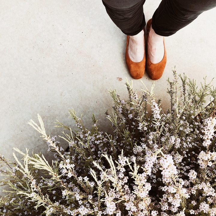 Woman standing in cognac Everlane day heels near flowering bush.