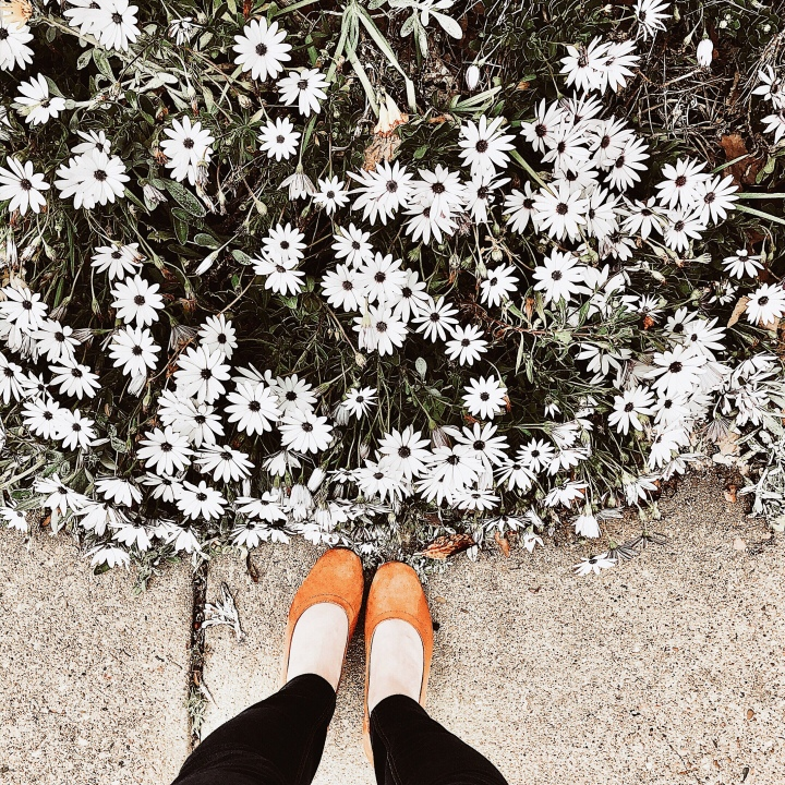 Woman standing in cognac Everlane day heels near flowering daisies.
