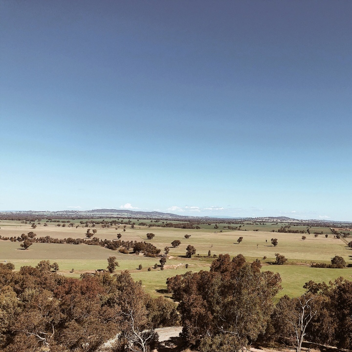 View from Morgan's lookout, Walla Walla, New South Wales, Australia.
