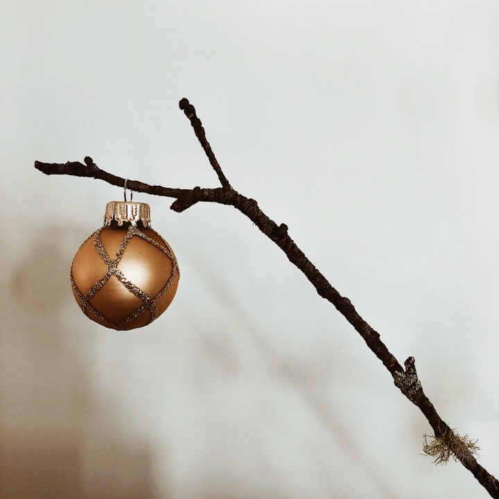 Christmas bauble on bare branch.