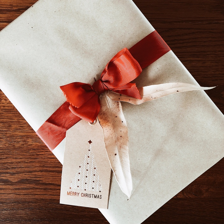 Christmas present wrapped in brown paper with a red grosgrain ribbon.