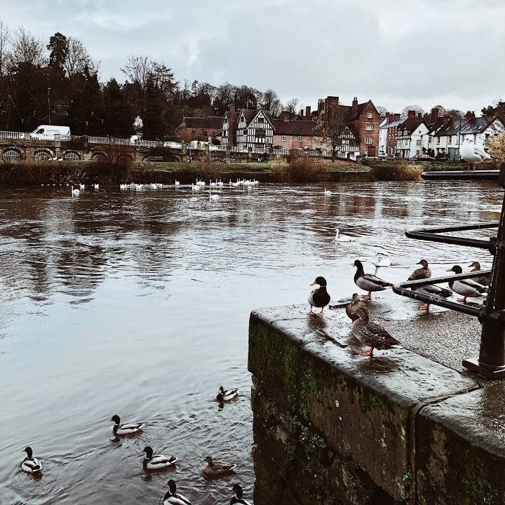 The River Severn at Bewdley, Worcestershire, United Kingdom.