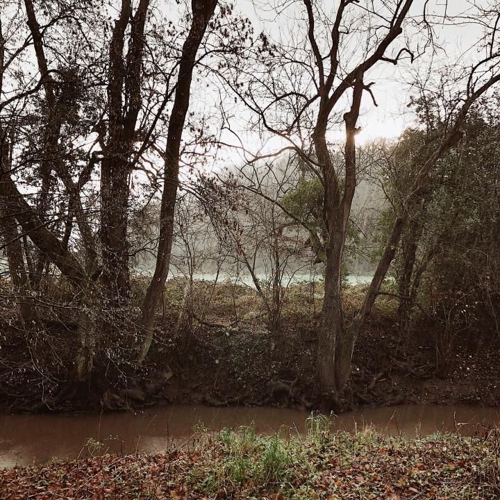 Dowles Brook near Bewdley, Worcestershire, United Kingdom.
