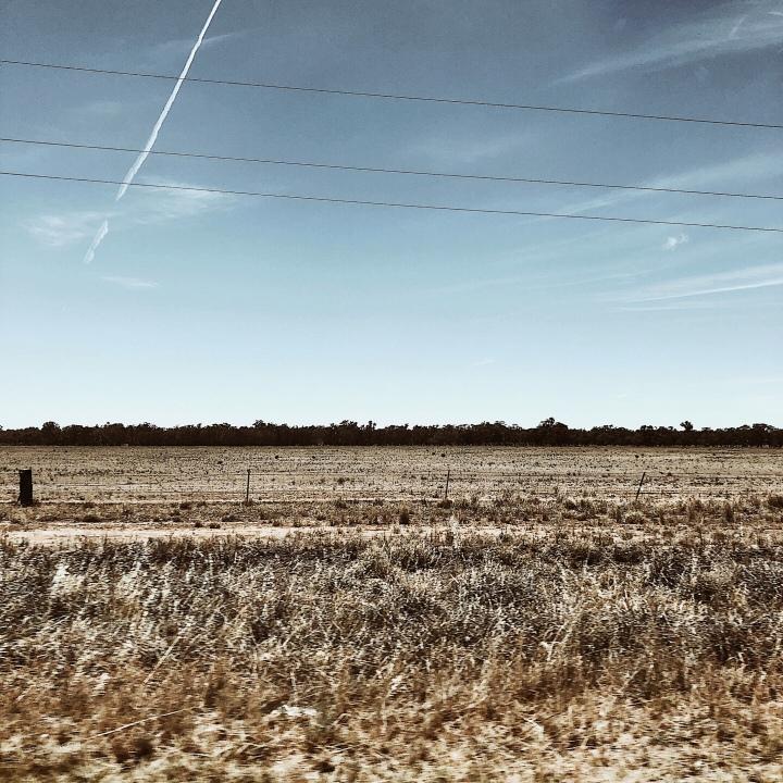 Farmland in the Riverina region of New South Wales, Australia.