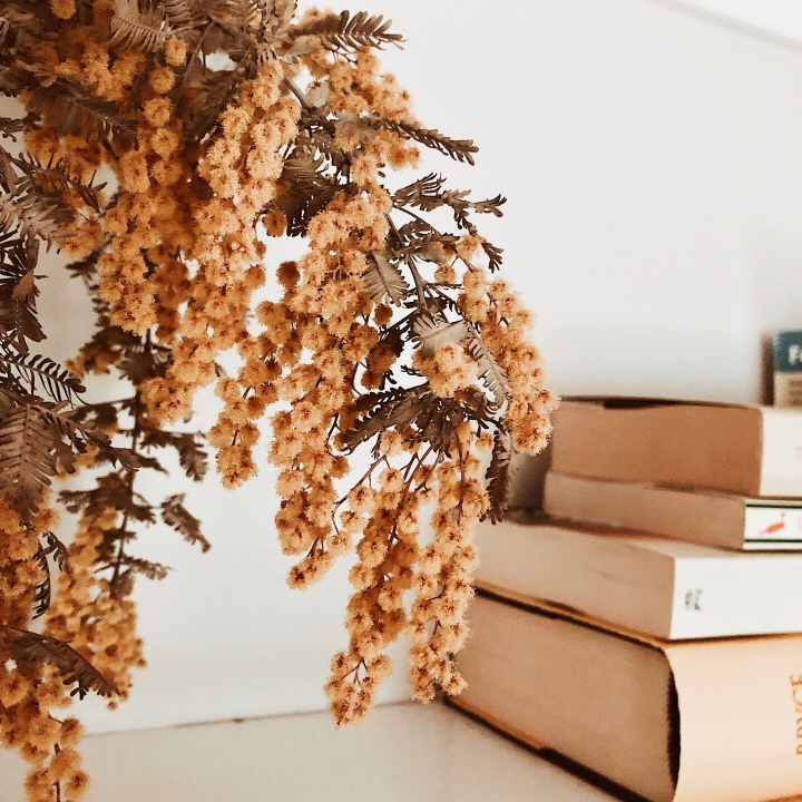 Dried wattle beside a stack of books.