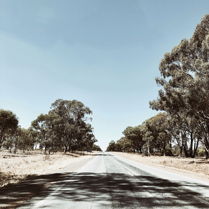 An empty road in the Riverina region of New South Wales, Australia.