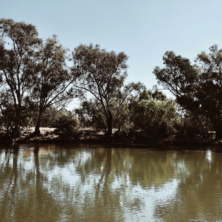 The Murray River at Albury.