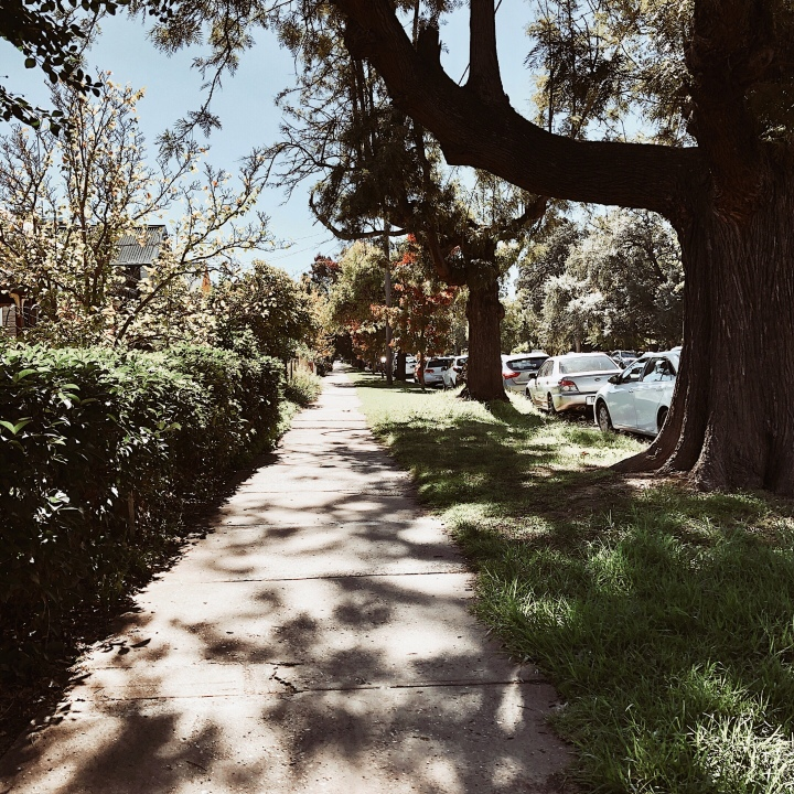 Looking down a sunny footpath in Wagga Wagga, New South Wales, Australia.
