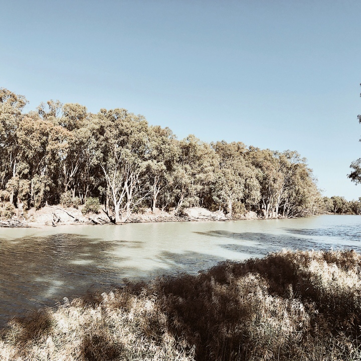 The Murrumbidgee River at Hay, New South Wales, Australia.