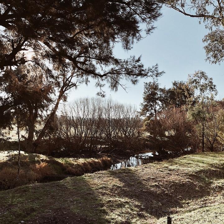 The banks of the Tumut River at Killimicat, New South Wales, Australia.